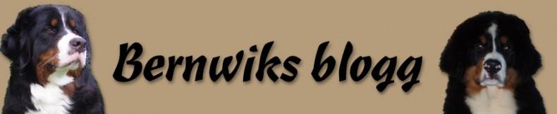 bernwiks